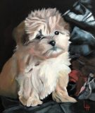 "The puppy Harley, 24x30""."