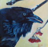 """Raven Among Mountain Ash. From a photo by Amy Bragg. 8x8""""."""